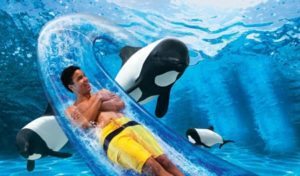 seaworld promotional graphic